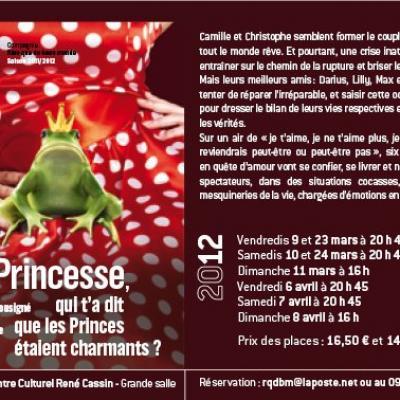 Flyer Princesse